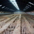 Terracotta Army in Xian, China. — Stock Photo