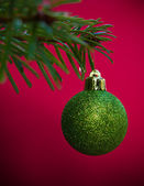 Festive bauble on pine tree — Stock Photo