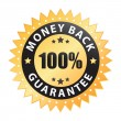 100% money back guarantee — Stockvectorbeeld
