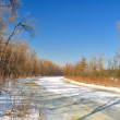 Frozen river — Stock Photo #5326615