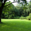 Lawn in a botanical garden - Stock Photo