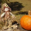 Happy Scarecrow — Stock Photo