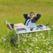 Stock Photo: Business outdoor