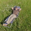 Stock Photo: Man in meadow relaxing