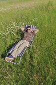 Man in meadow relaxing — Stock Photo