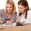 Student series - Two friends writing homework — Stock Photo #4681252