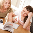 Stock Photo: Student series - Two girls studying together