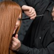 Professional hairdresser with fashion model at luxury salon — Stock Photo #4683850