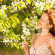 Young woman enjoying spring under blossom tree - Stock Photo