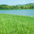 Green meadows with natural mountain lake — Stock Photo #4684588