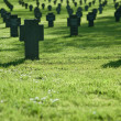 Stock Photo: Cemetery with grass in sunset