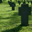 Crosses in grass on cemetery - Foto Stock