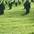 Row of crosses in cemetery with grass - Stock fotografie