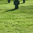 Grass field with crosses during  sunset, cemetery - Stockfoto