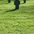 Grass field with crosses during  sunset, cemetery - Stock Photo