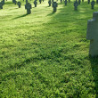 Cemetery with crosses in grass during sunset - Stock Photo