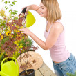 Gardening - woman sprinkling water to plant — Stok fotoğraf