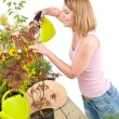 Gardening - woman sprinkling water to plant — Stock Photo