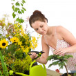 Gardening - woman cutting tree with pruning shears — Stockfoto