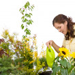 Gardening - Woman pouring plants with watering can — Stock Photo #4684748