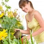 Gardening - smiling woman holding flower pot — Stock Photo #4684779