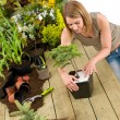 Gardening - woman with bonsai tree and plants - 