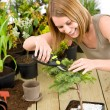 Gardening - woman trimming bonsai tree — Stock Photo