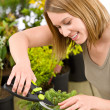 Gardening - woman trimming bonsai tree — Stock Photo #4684853