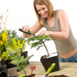 Gardening - woman trimming bonsai tree — Stock Photo #4684859