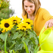 Gardening - woman pouring flowers — Stock Photo #4684872