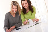 Student series - Two students writing homework — Foto de Stock
