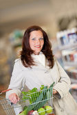 Shopping series - Brown hair woman with basket — Stock Photo