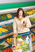 Zakupy sklep spożywczy - kobieta w stroju zima — Zdjęcie stockowe