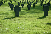 Cemetery with grass in sunset — Stock Photo