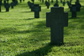 Crosses in grass on cemetery — Stock Photo