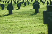 Row of crosses in cemetery with grass — Stock Photo