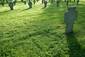 Cemetery with crosses in grass during sunset — Stock Photo