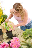 Gardening - woman with shovel take care of plant — Foto Stock