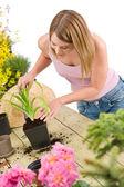 Jardinagem - mulher com pá cuidar da planta — Foto Stock