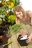 Gardening - woman with bonsai tree and plants — Stock Photo
