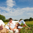 Picnic - Romantic couple in spring nature — Stock Photo #4693652
