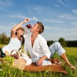 Picnic - Romantic couple in spring nature — Stock Photo #4693670