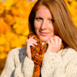 Autumn country sunset - red hair woman — Stock Photo #4694029