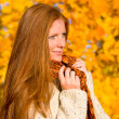 Autumn country sunset - red hair woman — Stock Photo #4694031