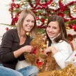 Two smiling women with Christmas decoration — Stock Photo #4695831
