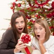 Two smiling women with Christmas present — Stock Photo #4695877