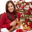 Attractive young woman with Christmas decoration — Stock Photo #4695977