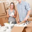 Royalty-Free Stock Photo: Moving house: Young couple unpacking kitchen dishes