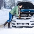Foto Stock: Winter car breakdown - woman repair motor