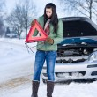 Stockfoto: Winter car breakdown - woman warning triangle